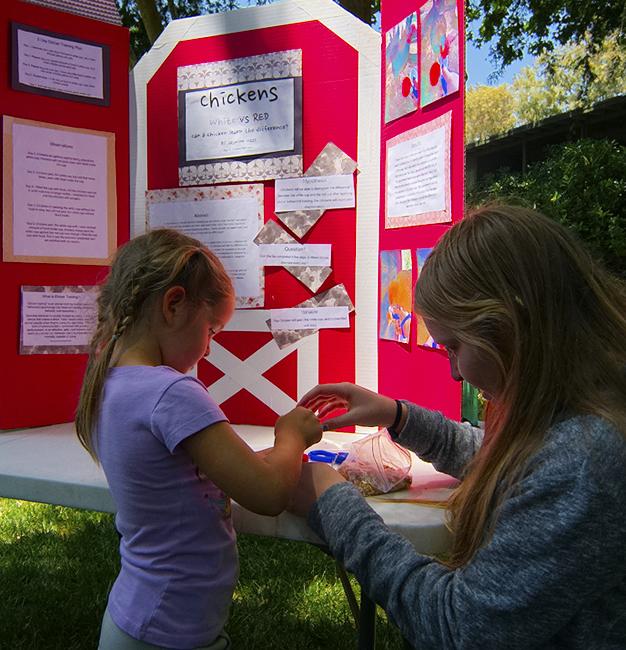 LWS Science Fair 2015 - Living Wisdom School